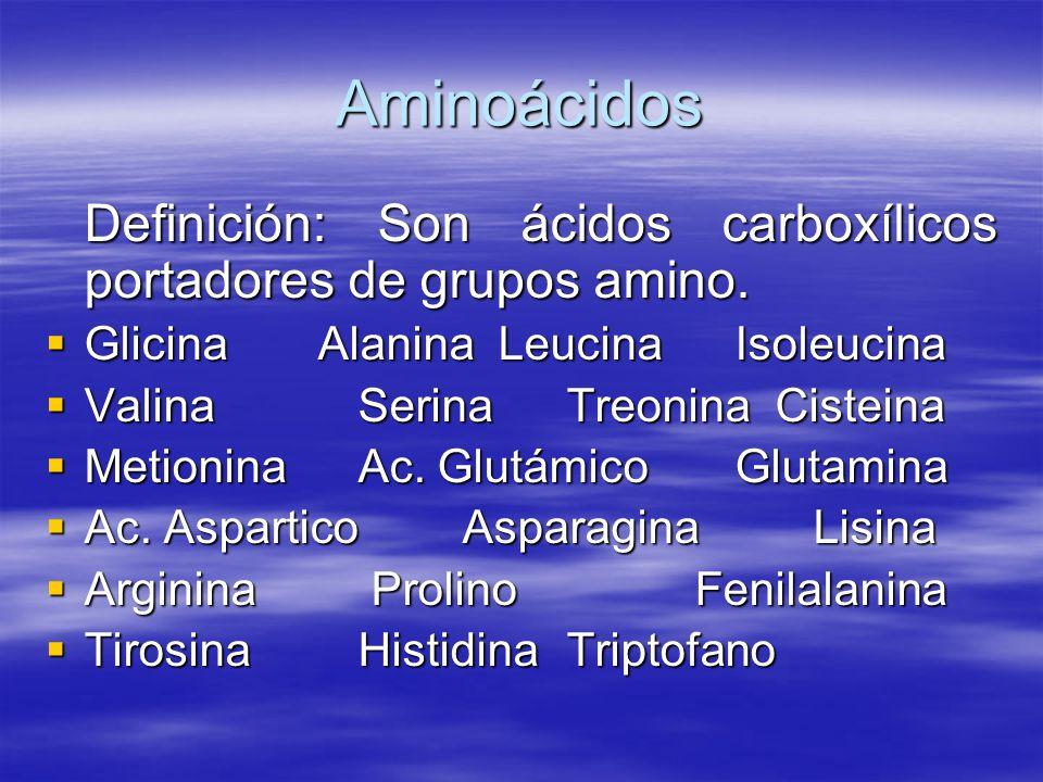 Aminoácidos Definición: Son ácidos carboxílicos portadores de grupos amino. Glicina Alanina Leucina Isoleucina.