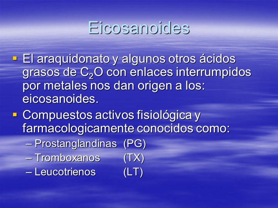 Eicosanoides El araquidonato y algunos otros ácidos grasos de C2O con enlaces interrumpidos por metales nos dan origen a los: eicosanoides.