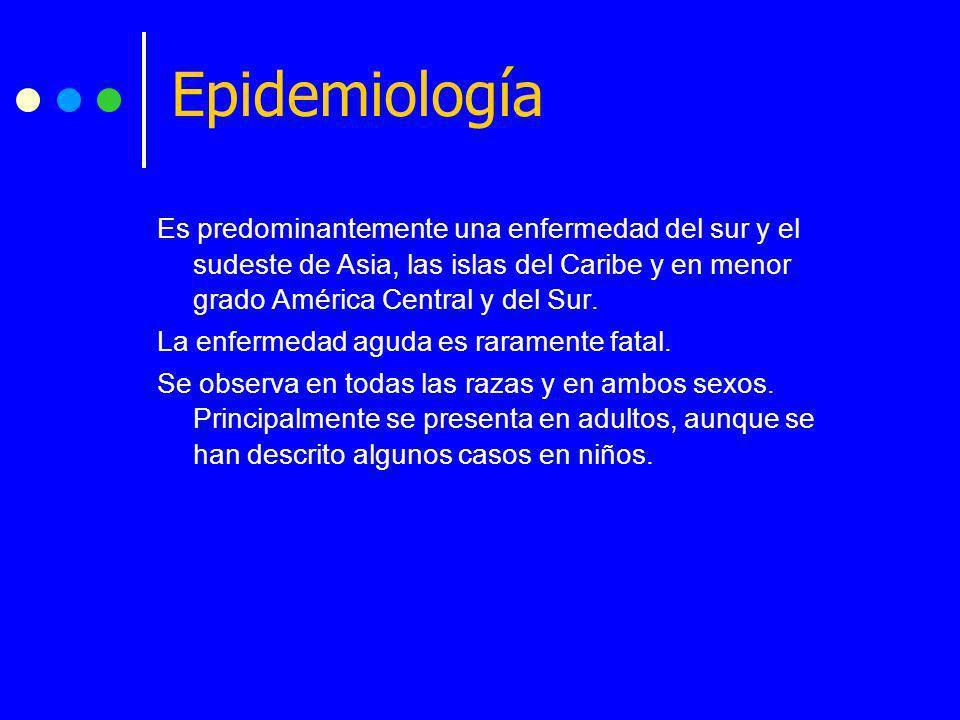 Epidemiología Es predominantemente una enfermedad del sur y el sudeste de Asia, las islas del Caribe y en menor grado América Central y del Sur.