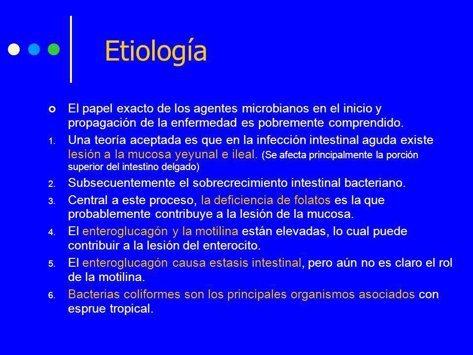 Etiología El papel exacto de los agentes microbianos en el inicio y propagación de la enfermedad es pobremente comprendido.