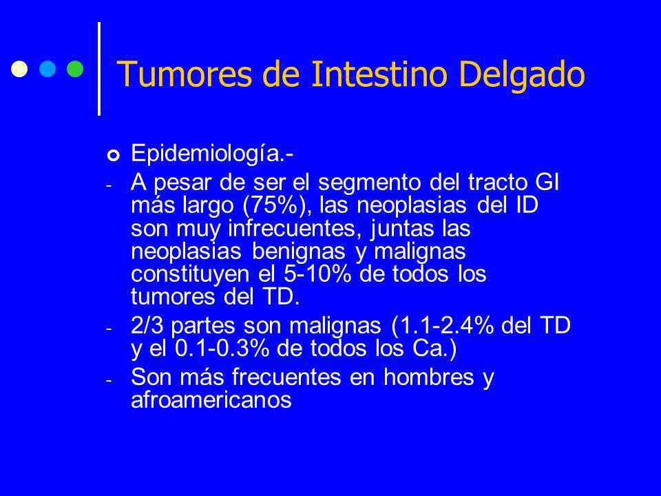 Tumores de Intestino Delgado