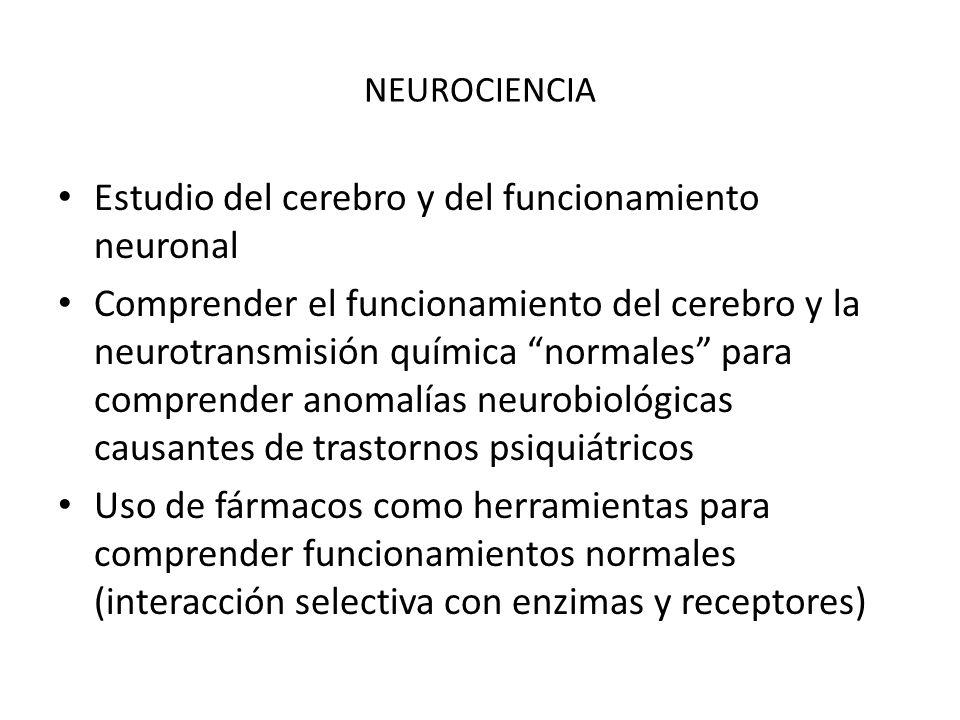 Estudio del cerebro y del funcionamiento neuronal