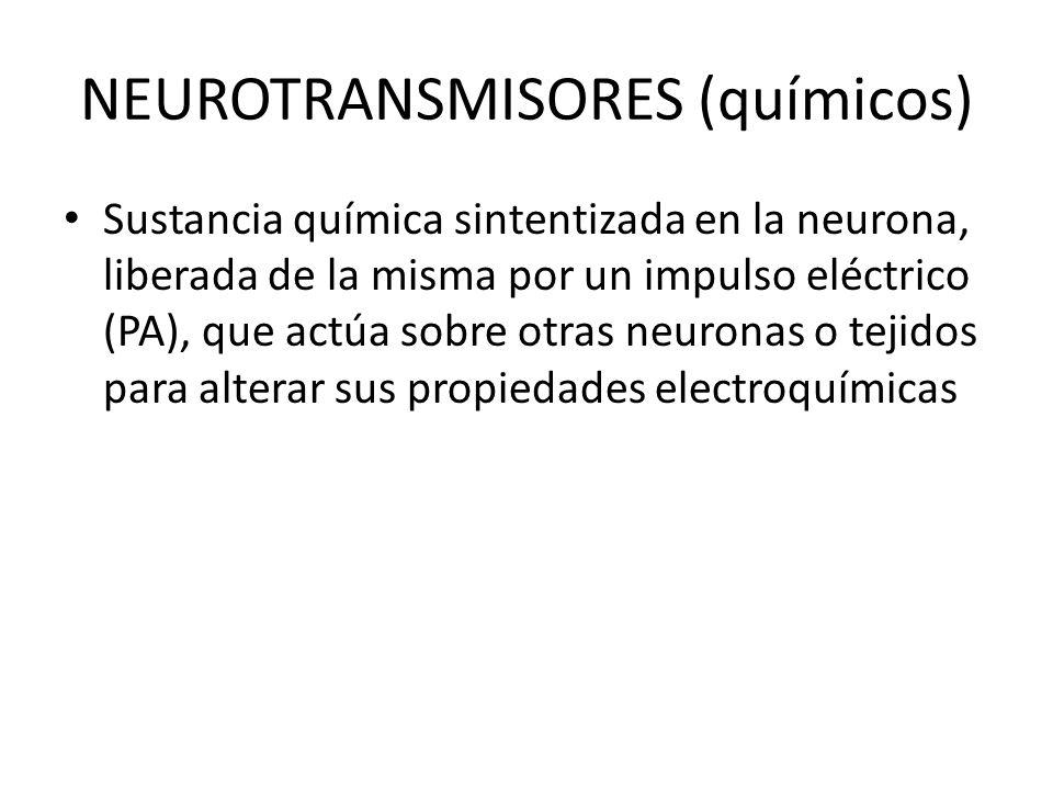 NEUROTRANSMISORES (químicos)