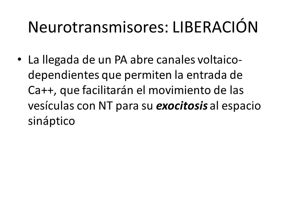 Neurotransmisores: LIBERACIÓN