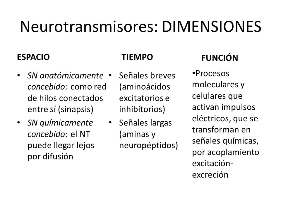 Neurotransmisores: DIMENSIONES