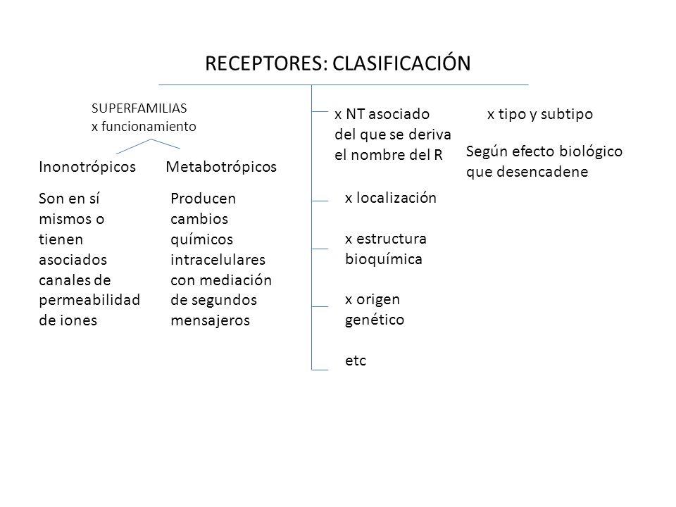 RECEPTORES: CLASIFICACIÓN