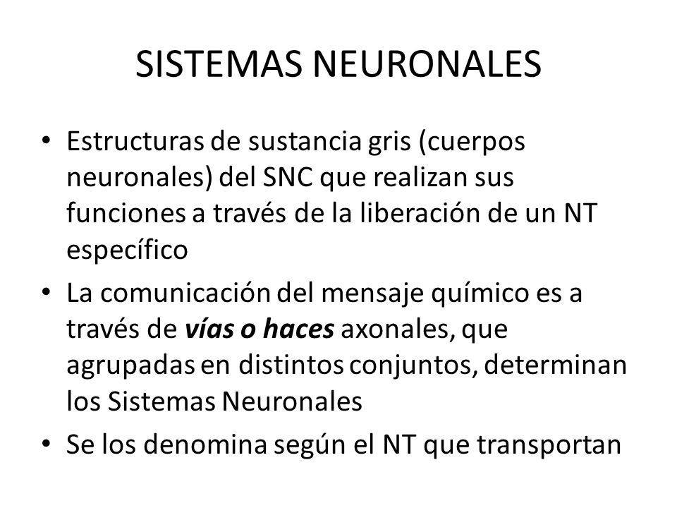 SISTEMAS NEURONALES