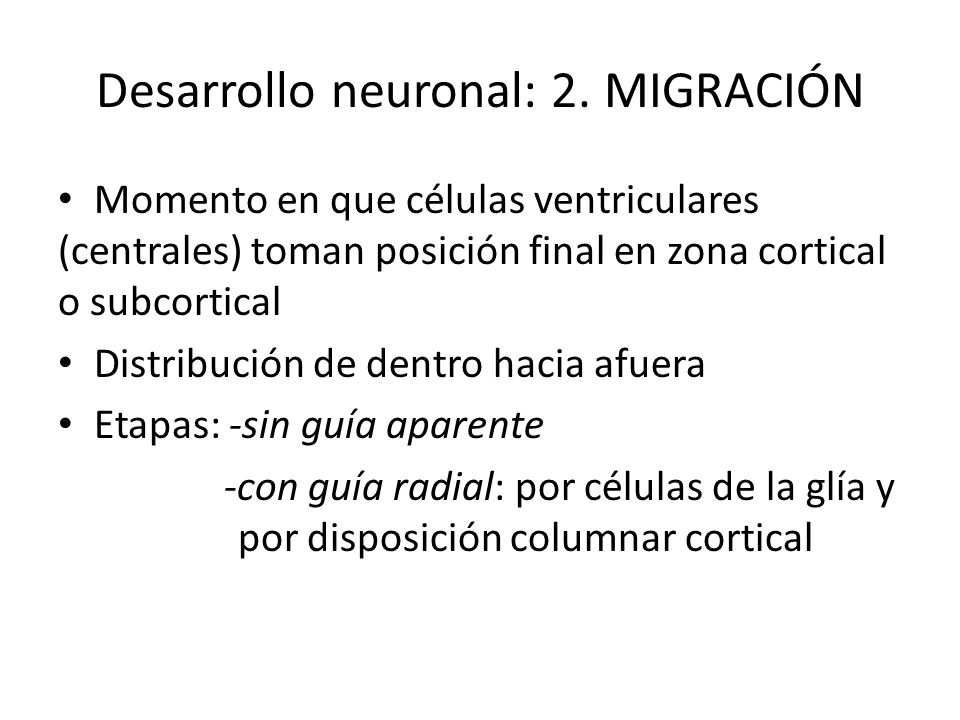 Desarrollo neuronal: 2. MIGRACIÓN