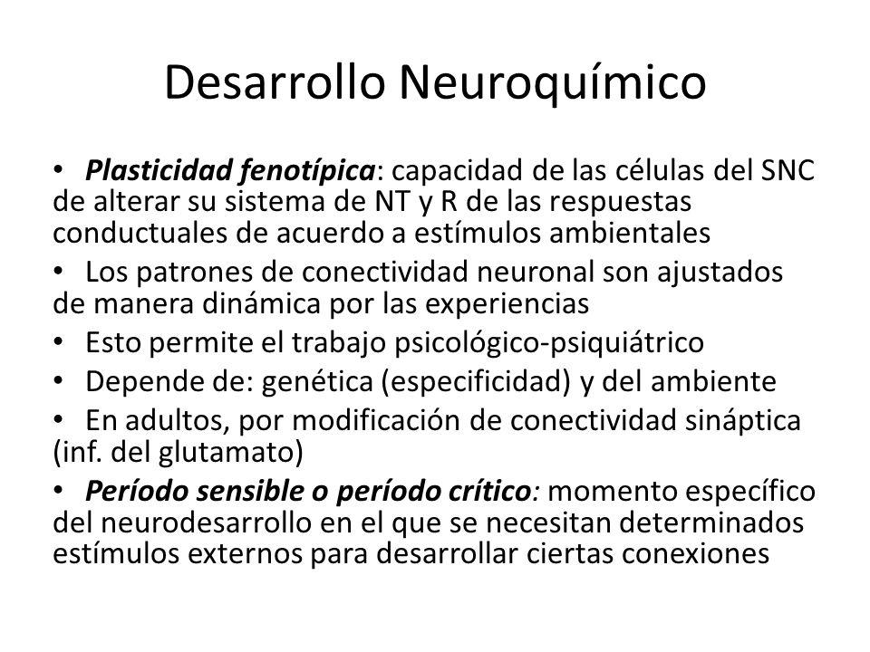 Desarrollo Neuroquímico