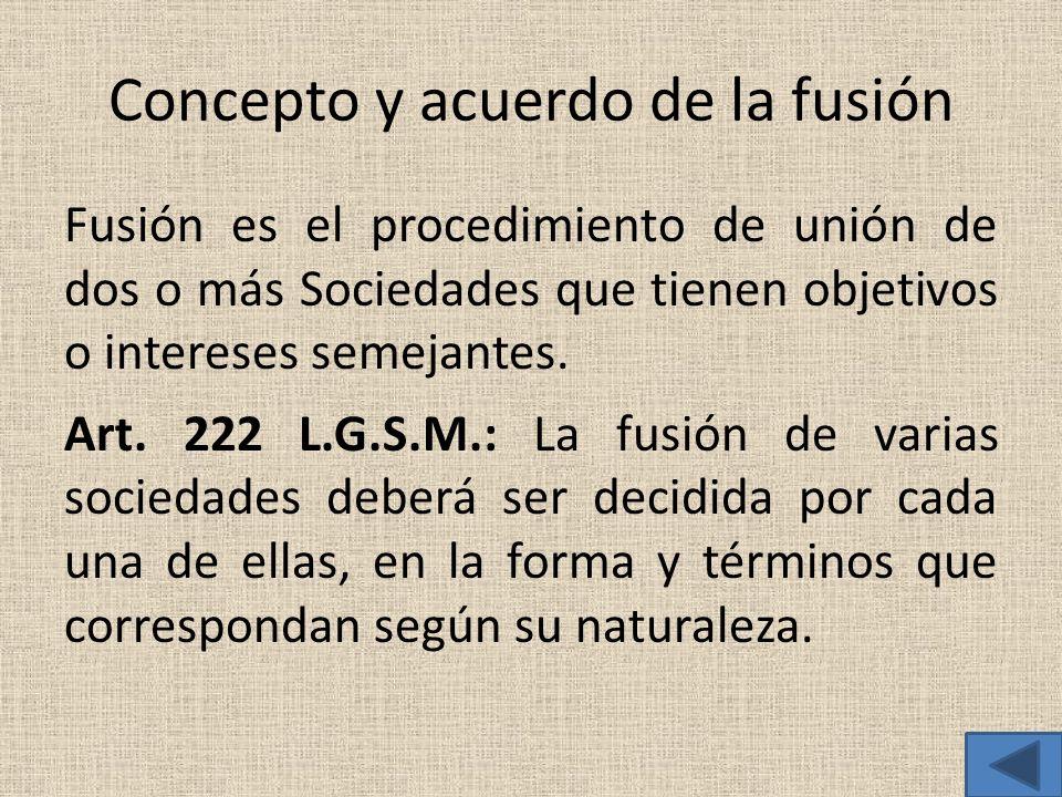Concepto y acuerdo de la fusión