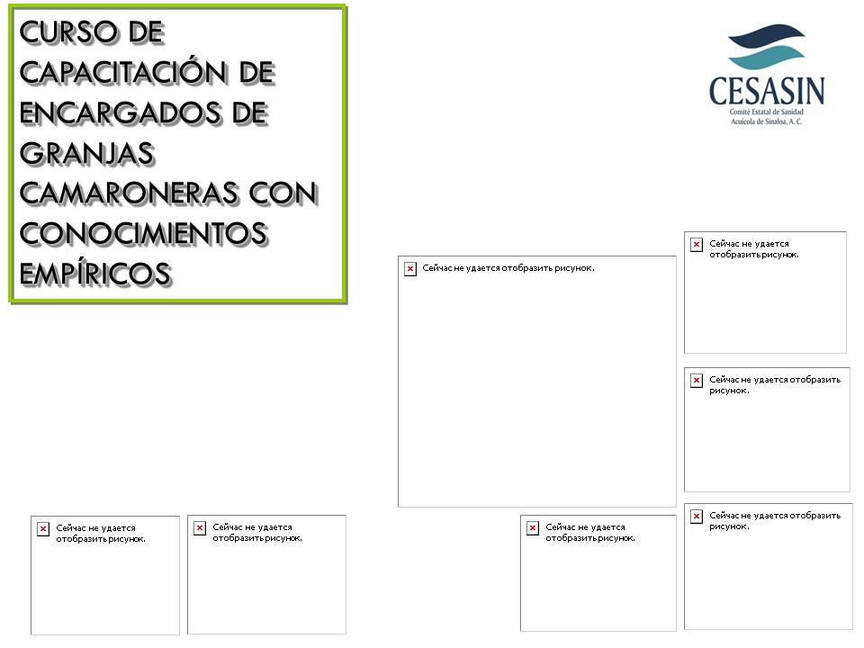 CURSO DE CAPACITACIÓN DE ENCARGADOS DE GRANJAS CAMARONERAS CON CONOCIMIENTOS EMPÍRICOS