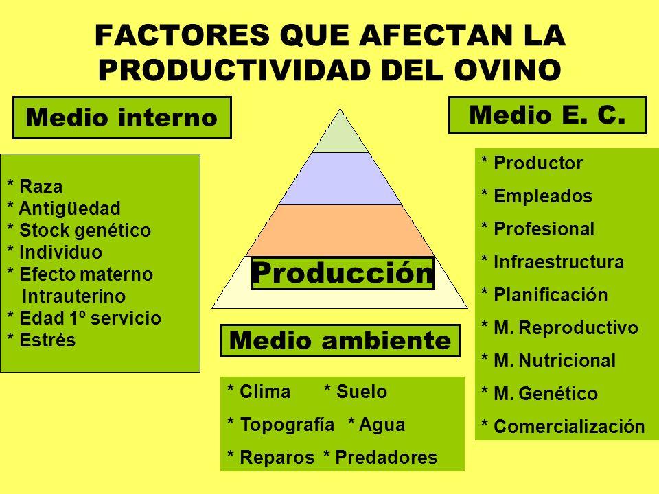 FACTORES QUE AFECTAN LA PRODUCTIVIDAD DEL OVINO