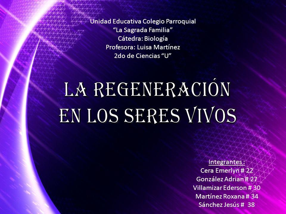 La Regeneración En los seres vivos Unidad Educativa Colegio Parroquial