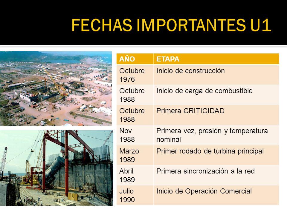 FECHAS IMPORTANTES U1 AÑO ETAPA Octubre 1976 Inicio de construcción