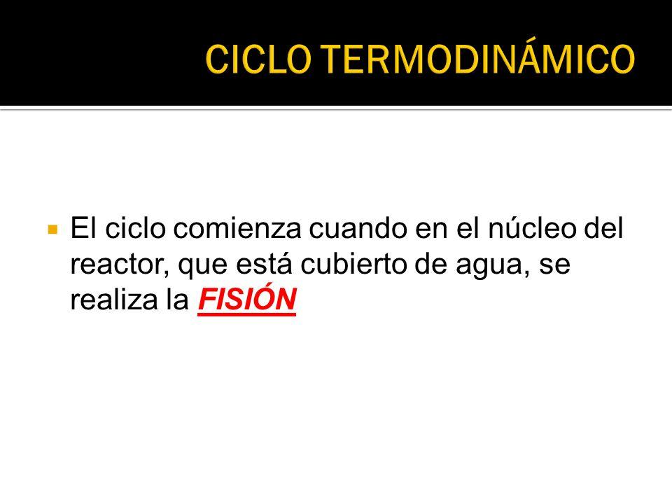 CICLO TERMODINÁMICO El ciclo comienza cuando en el núcleo del reactor, que está cubierto de agua, se realiza la FISIÓN.