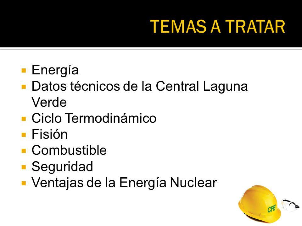 TEMAS A TRATAR Energía Datos técnicos de la Central Laguna Verde