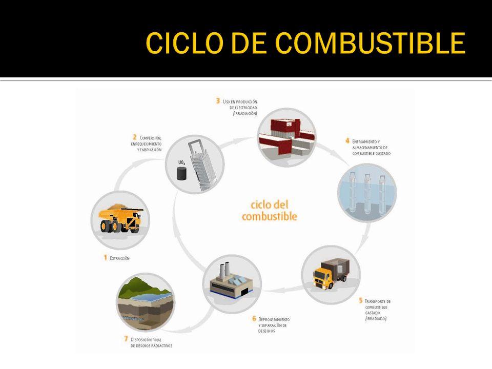 CICLO DE COMBUSTIBLE