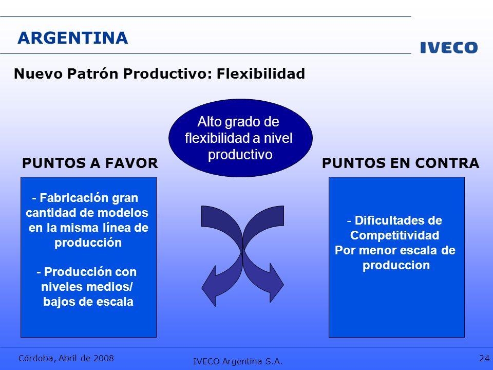 ARGENTINA Nuevo Patrón Productivo: Flexibilidad Alto grado de