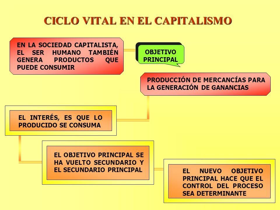 CICLO VITAL EN EL CAPITALISMO