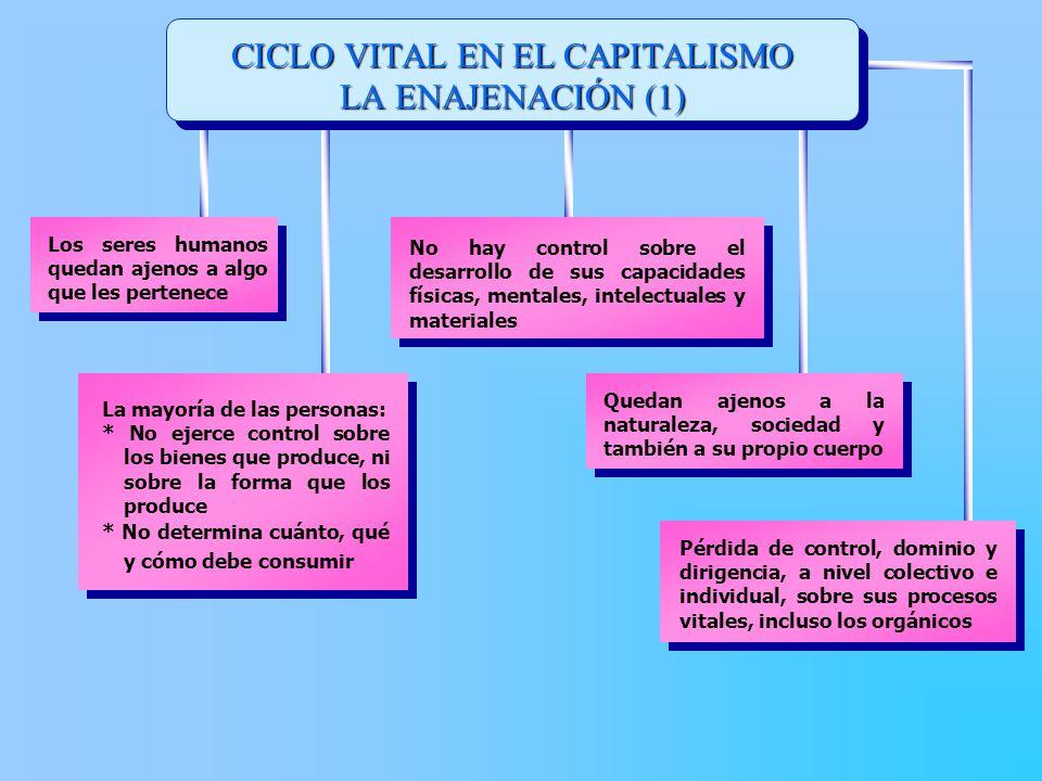 CICLO VITAL EN EL CAPITALISMO LA ENAJENACIÓN (1)