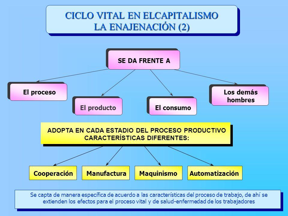 CICLO VITAL EN ELCAPITALISMO LA ENAJENACIÓN (2)