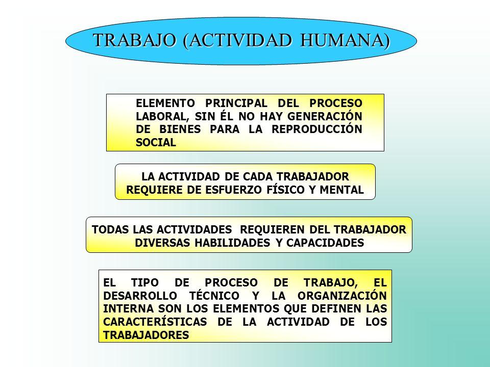 TRABAJO (ACTIVIDAD HUMANA)