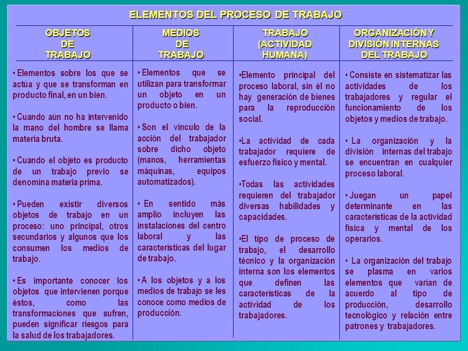 ORGANIZACIÓN Y DIVISIÓN INTERNAS DEL TRABAJO