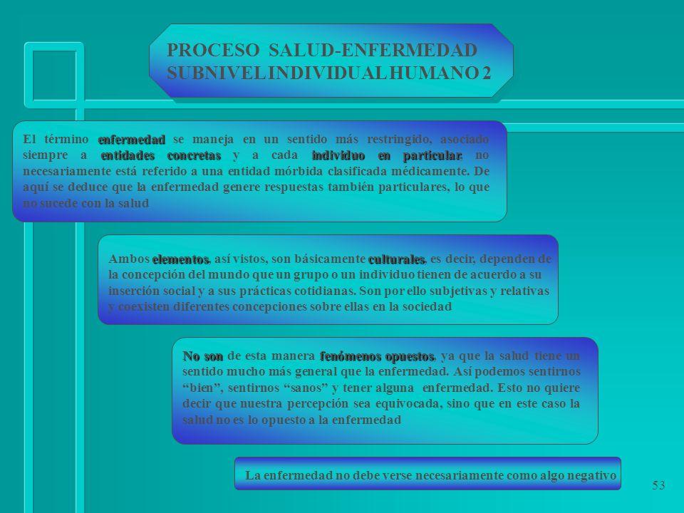 PROCESO SALUD-ENFERMEDAD SUBNIVEL INDIVIDUAL HUMANO 2
