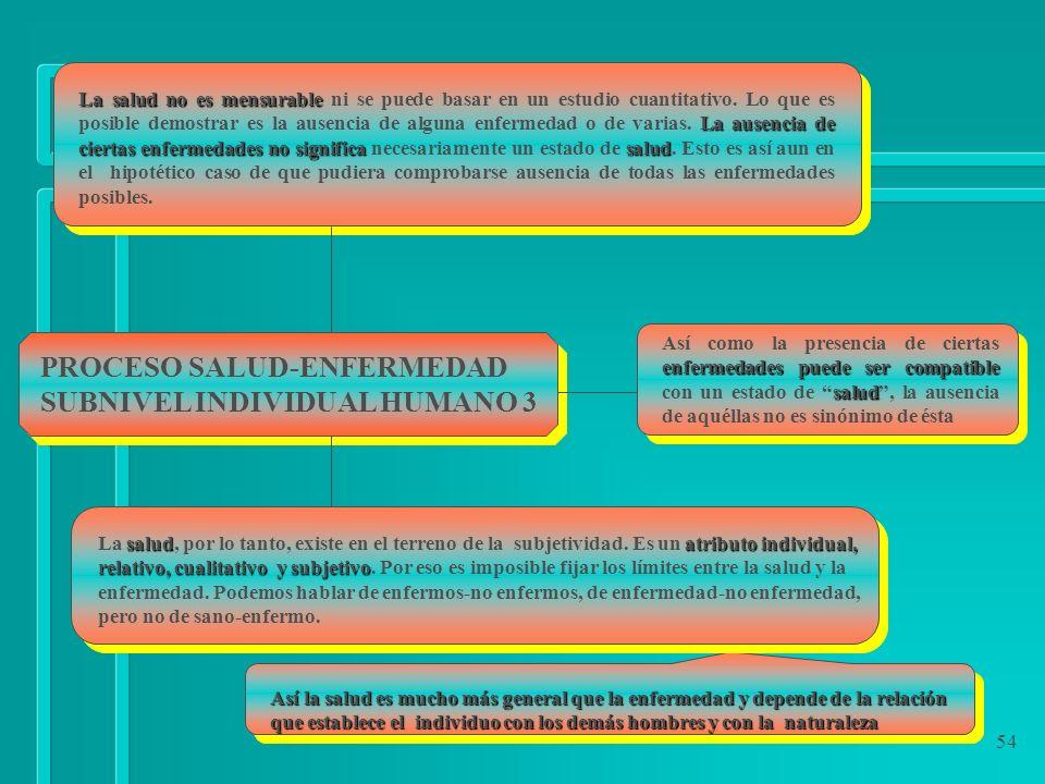 PROCESO SALUD-ENFERMEDAD SUBNIVEL INDIVIDUAL HUMANO 3