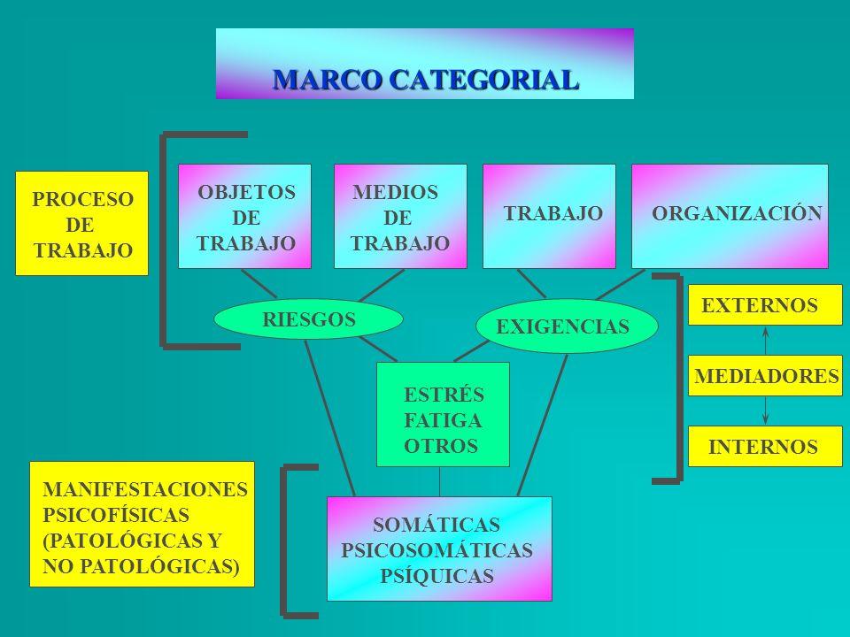 MARCO CATEGORIAL OBJETOS DE TRABAJO MEDIOS DE TRABAJO PROCESO DE