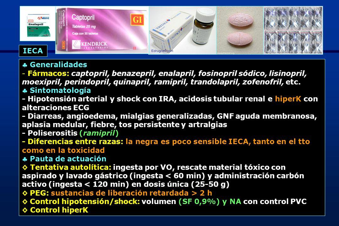 IECA  Generalidades.