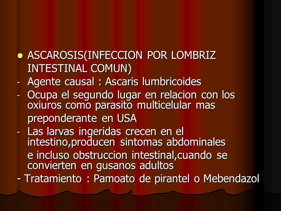 ASCAROSIS(INFECCION POR LOMBRIZ