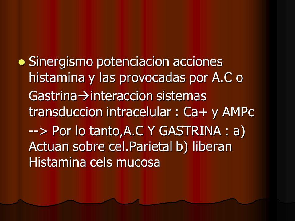 Sinergismo potenciacion acciones histamina y las provocadas por A.C o