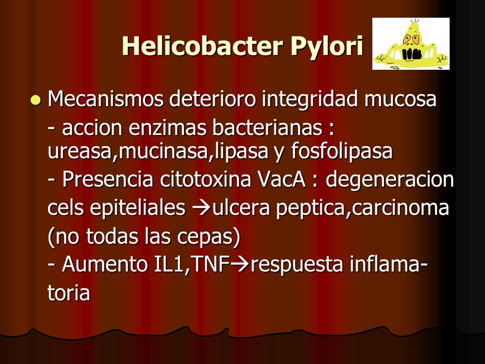 Helicobacter Pylori Mecanismos deterioro integridad mucosa