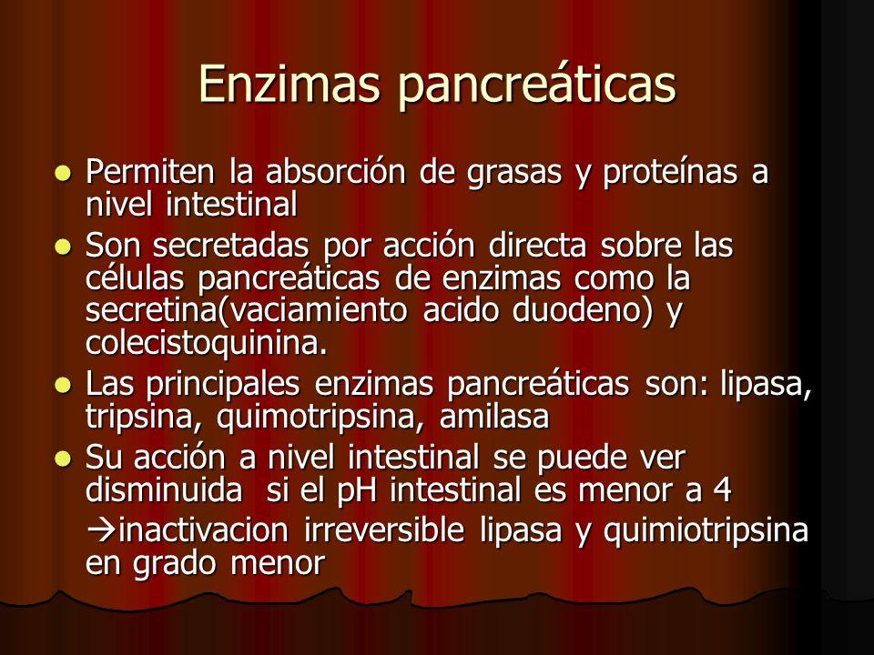 Enzimas pancreáticas Permiten la absorción de grasas y proteínas a nivel intestinal.
