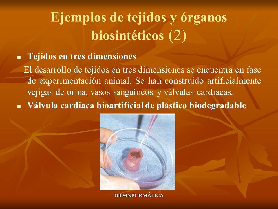 Ejemplos de tejidos y órganos biosintéticos (2)