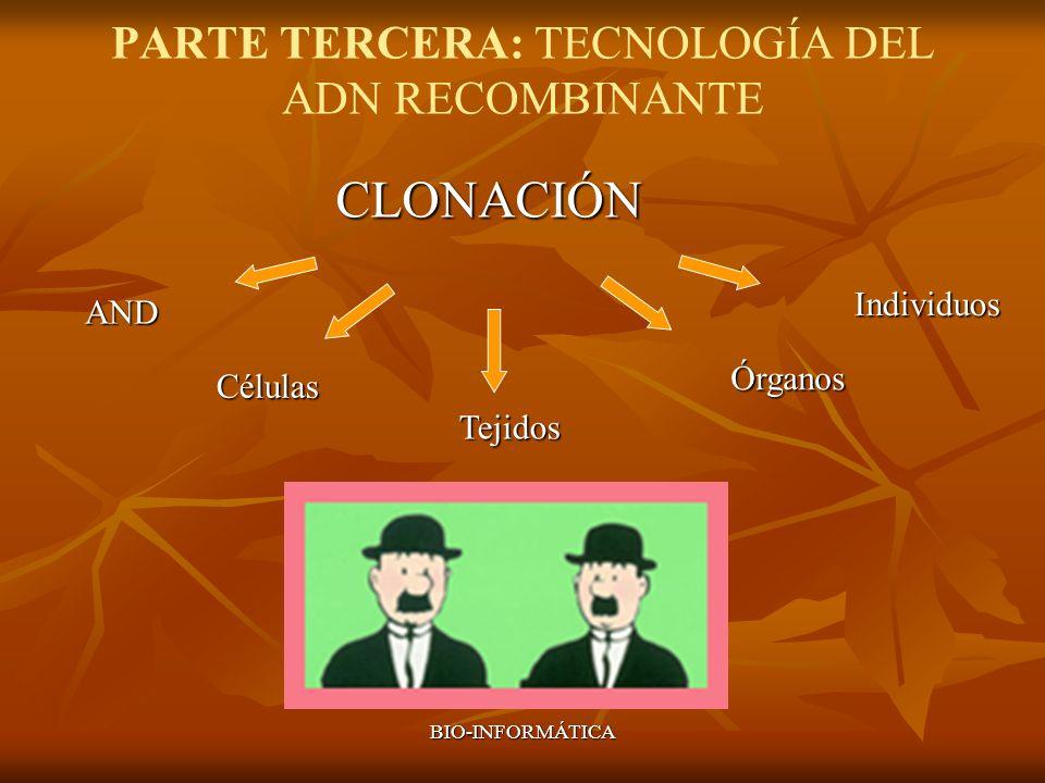 PARTE TERCERA: TECNOLOGÍA DEL ADN RECOMBINANTE