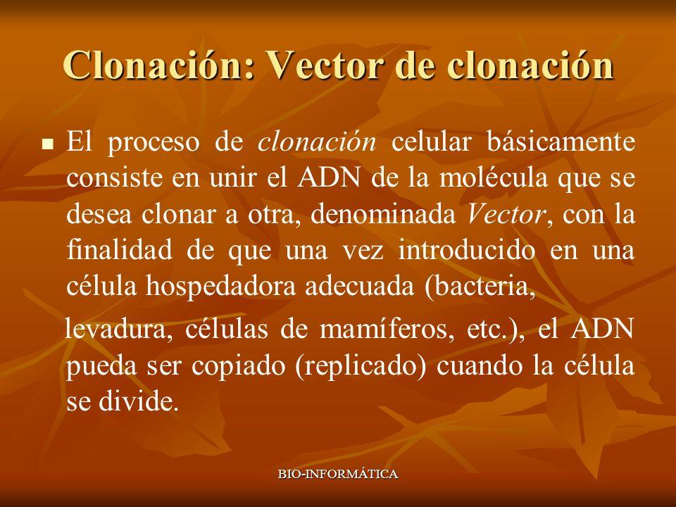 Clonación: Vector de clonación