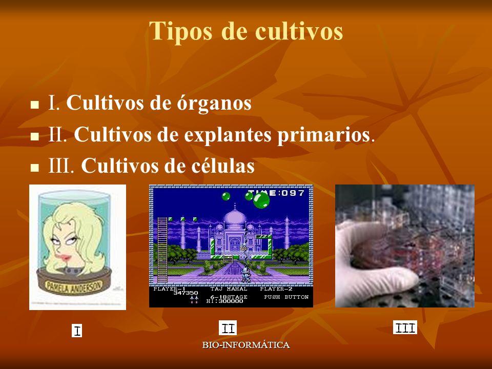Tipos de cultivos I. Cultivos de órganos