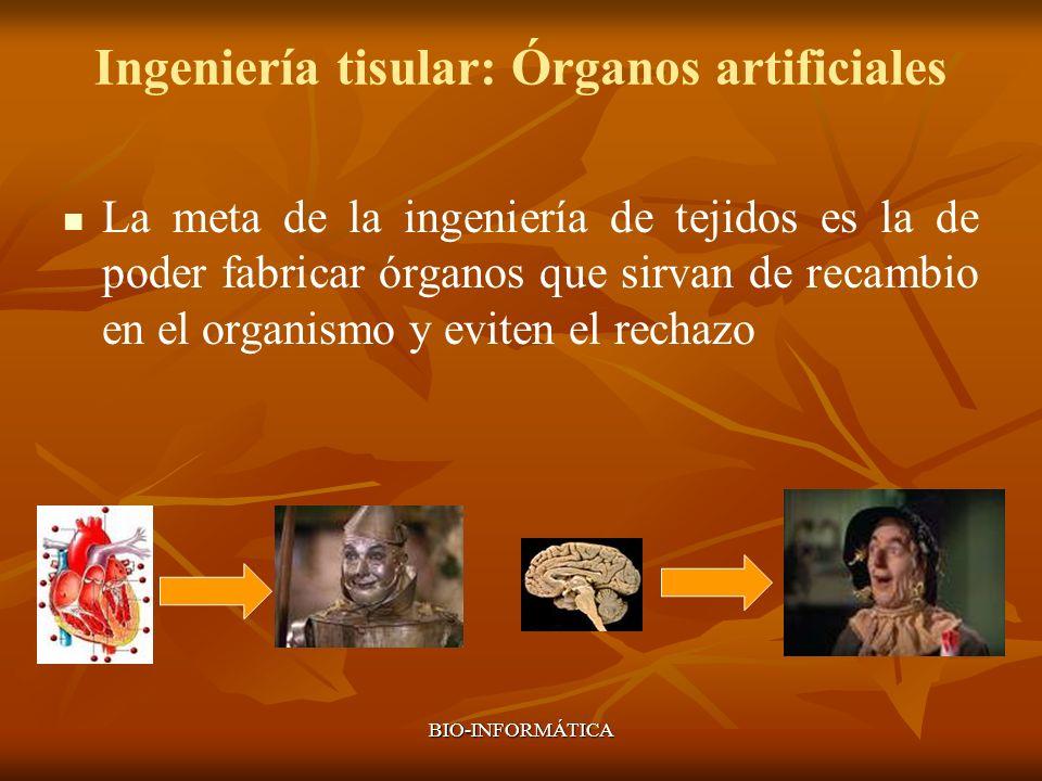 Ingeniería tisular: Órganos artificiales