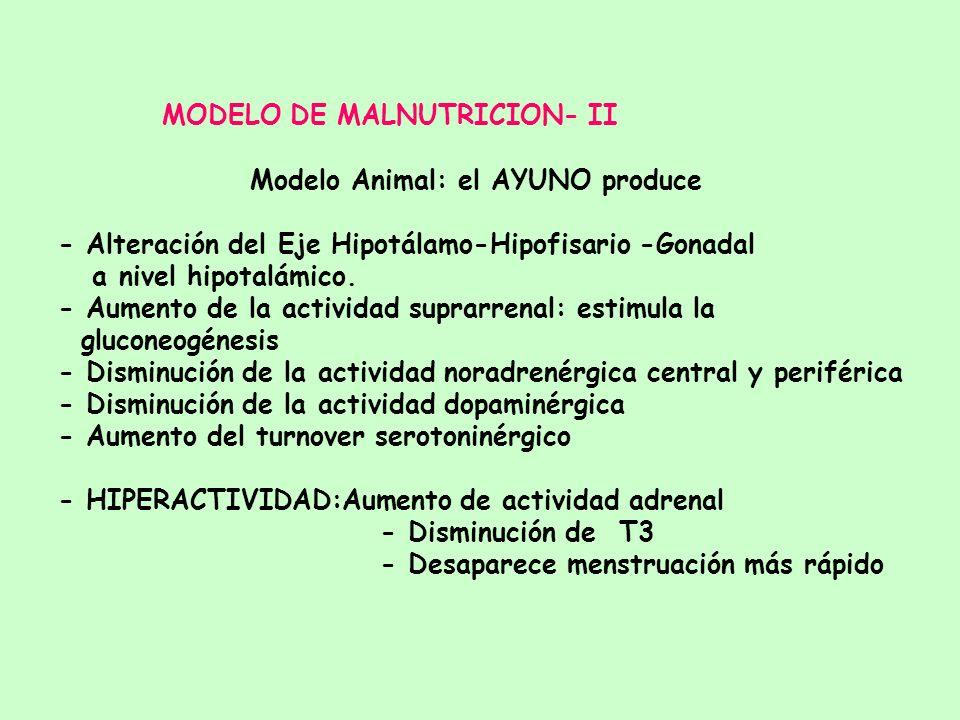MODELO DE MALNUTRICION- II