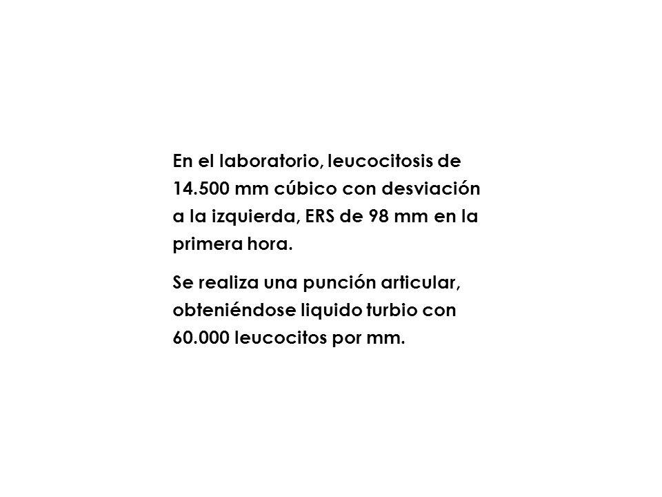 En el laboratorio, leucocitosis de 14