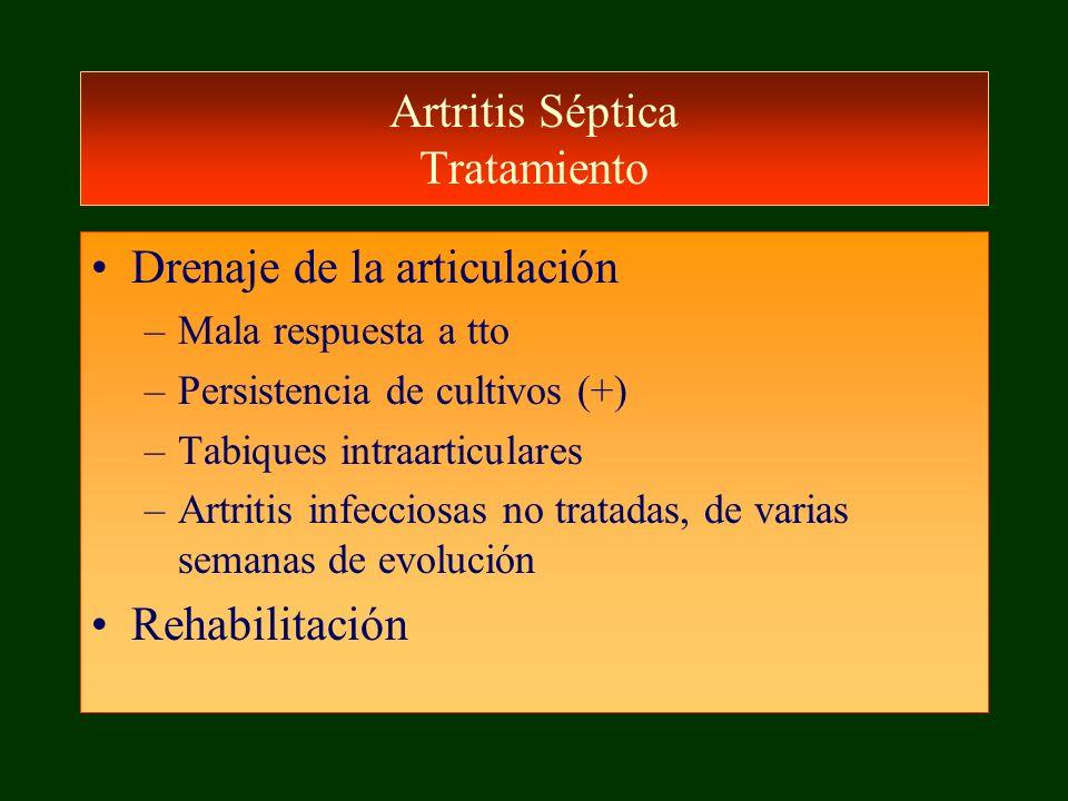 Artritis Séptica Tratamiento