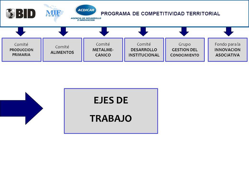 EJES DE TRABAJO PROGRAMA DE COMPETITIVIDAD TERRITORIAL Comité Comité
