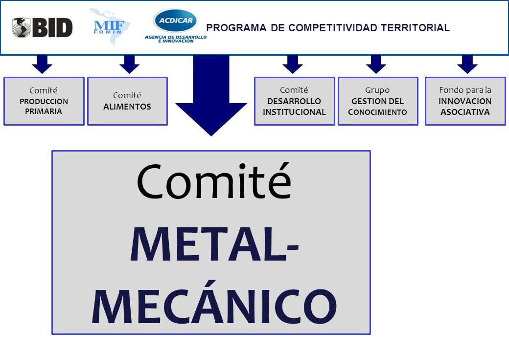 Comité METAL- MECÁNICO PROGRAMA DE COMPETITIVIDAD TERRITORIAL Comité