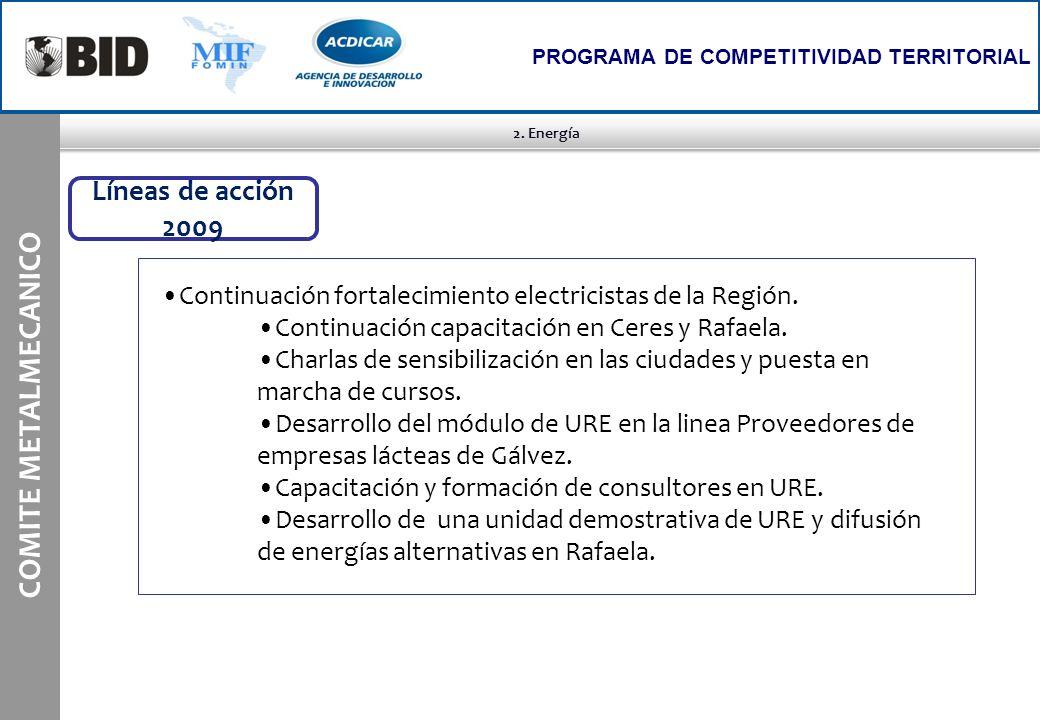 COMITE METALMECANICO Líneas de acción 2009