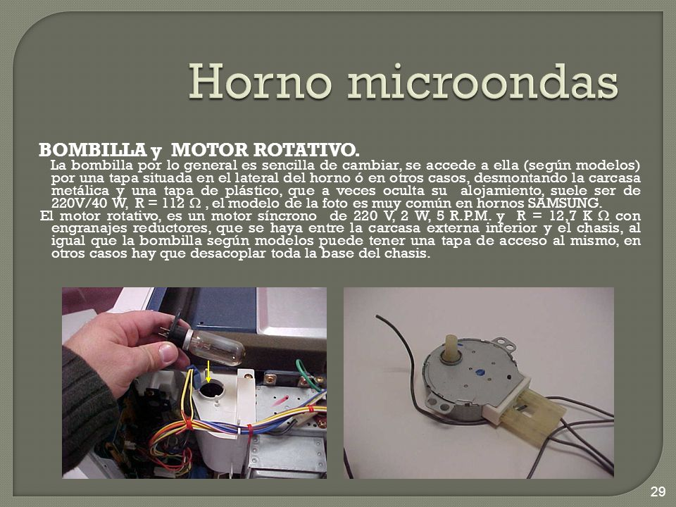 Horno microondas BOMBILLA y MOTOR ROTATIVO.