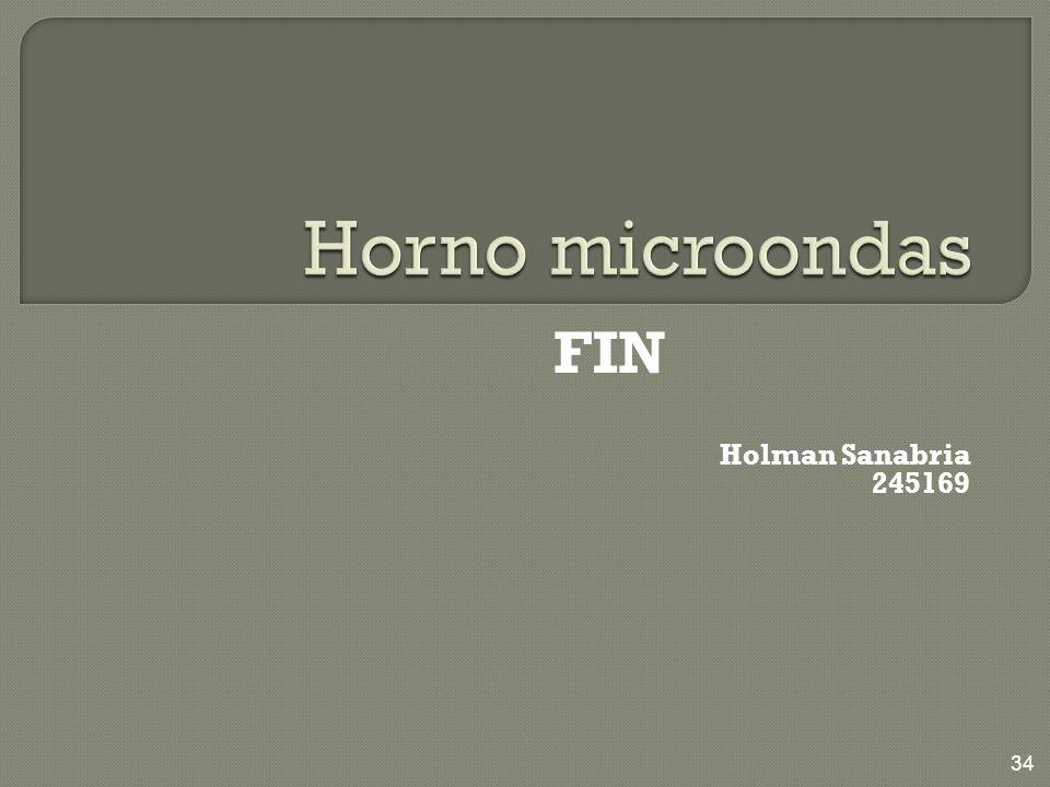 Horno microondas FIN Holman Sanabria 245169