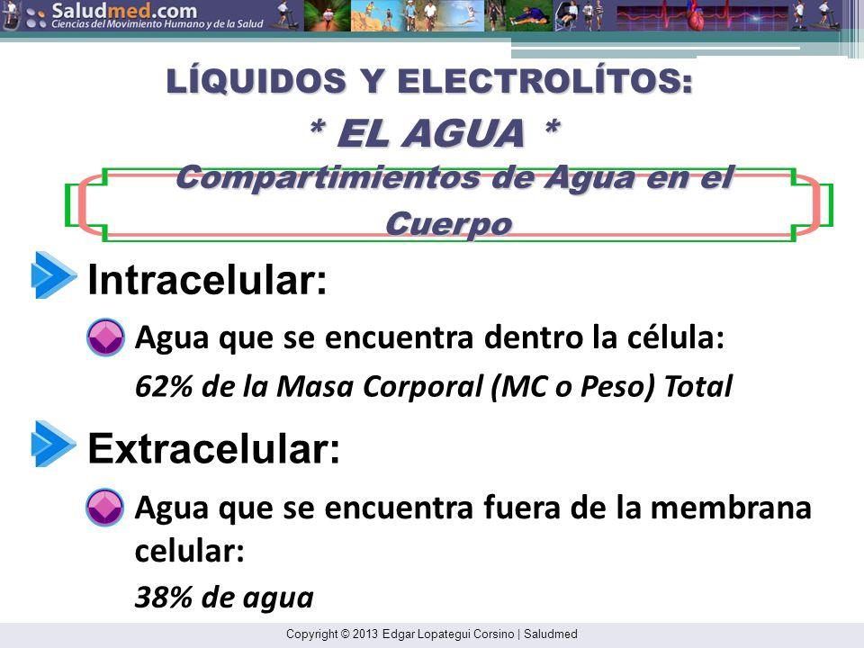 Intracelular: Extracelular: Agua que se encuentra dentro la célula: