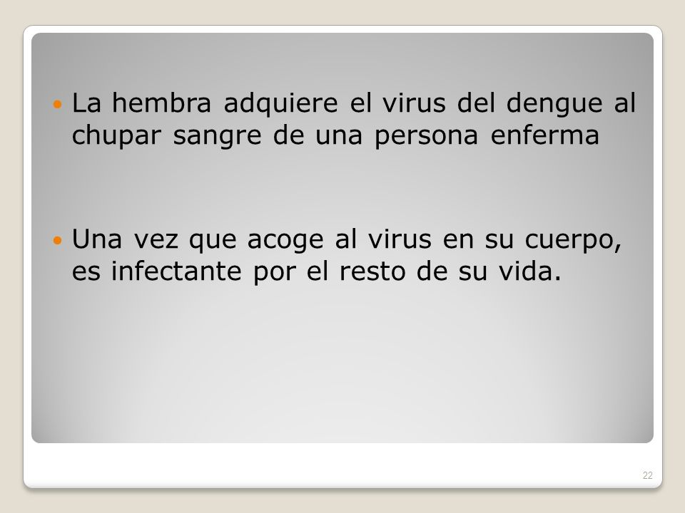 La hembra adquiere el virus del dengue al chupar sangre de una persona enferma